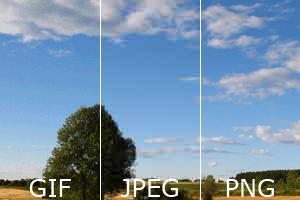 Häufig im Web verwendete Grafikformate
