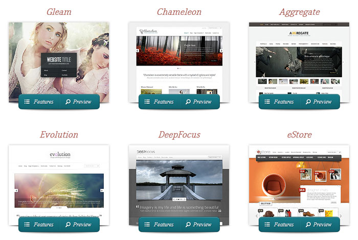 Screenshot der Themes-Vorschau auf der ElegantThemes-Website