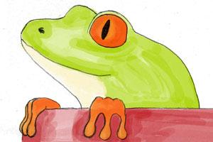 Der Frosch im Topf – oder rette Dich bevor es zu spät ist