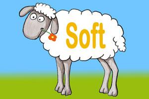 Soft Skills - Weiche Faktoren bestimmen deinen Erfolg