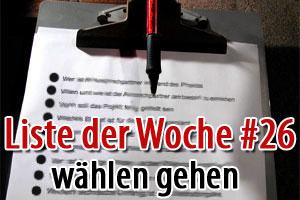 8 gute Gründe warum Du zur Bundestagswahl gehen solltest