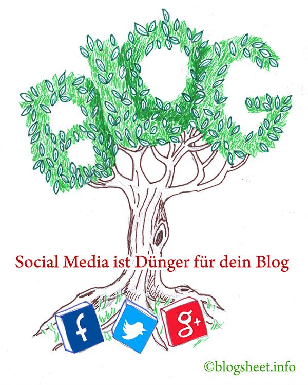 Social Media ist Dünger für dein Blog