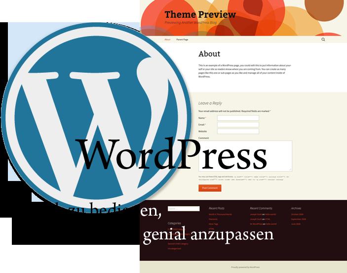Die WordPress Blog-Software ist so einfach wie genial
