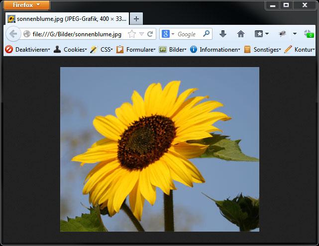 Der Screenshot zeigt wie der Firefox das Bild einer Sonnenblume auch im Tab anzeigt.